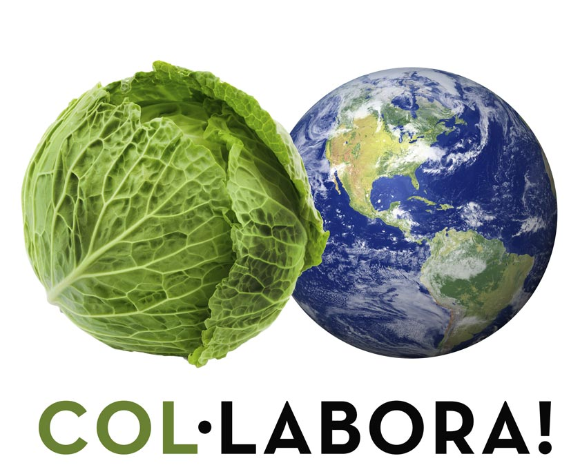 proyecto COL·LABORA